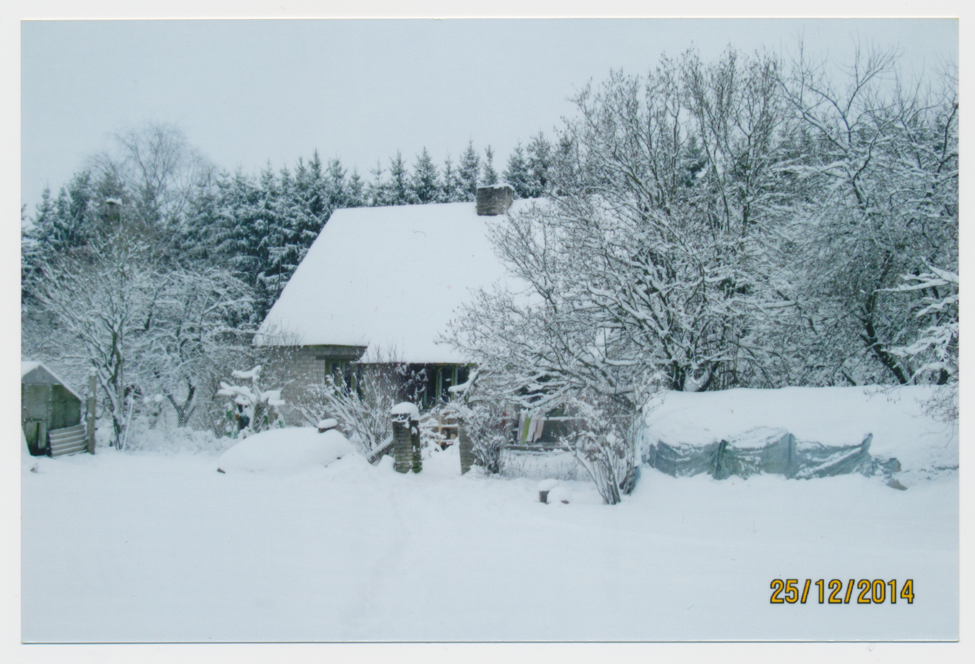 Talvine Alttoa