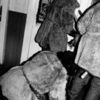 Sokud ja karu teel teise peresse