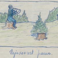 http://www.folklore.ee/era/materjalid/parandiaastale/era_2_89_0638-harg.jpg